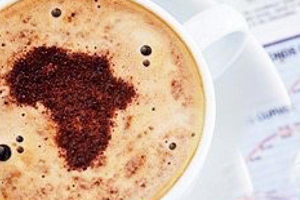 south africa cappuccino exploringafrica safariadv travel viaggi