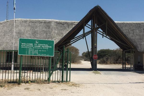 central kalahari exploring africa safariadv romina facchi botswana