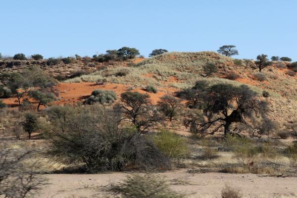 exploringafrica safaraiadv romina facchi namibia travel