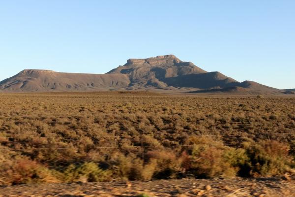 exploringafrica safariadv rominafacchi sudafrica southafrica