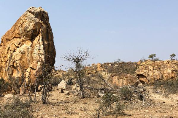 south africa sudafrica exploringafrica safariadvmapungubwe national park exploringafrica safariadv south africa