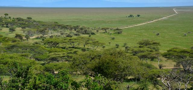 Naabi Hills in Serengeti National Park during the green season