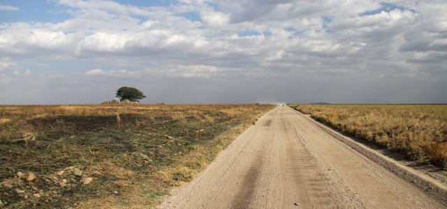 Driving through Serengeti National Park