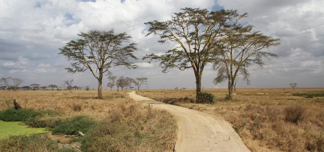 Serengeti National Park: Seronera Valley