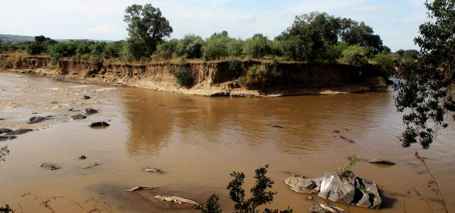 masai mara exploringafrica savannah romina facchi safariadv gnu great migration zebre river