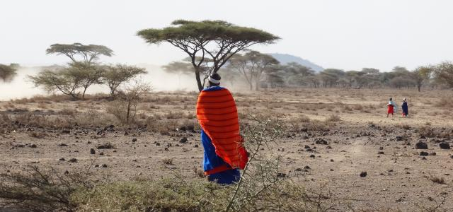 maasai woman walks in the savannah