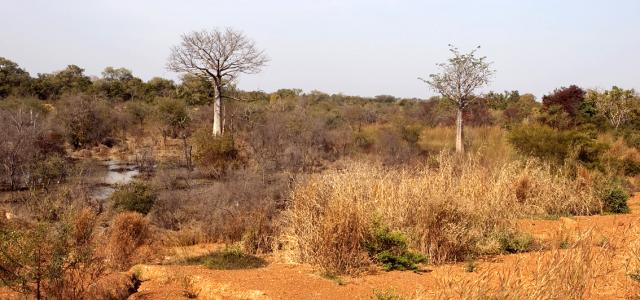 togo exploringafrica safariadv romina facchi travel keran