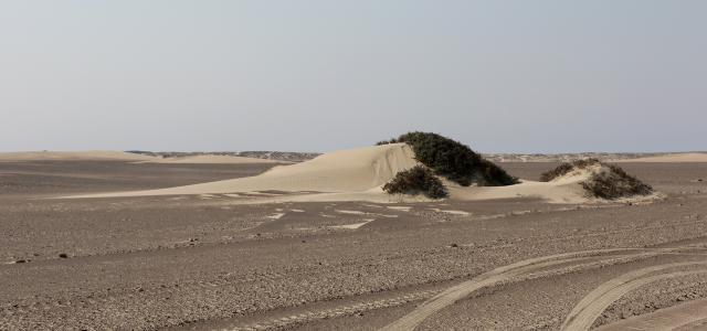 skeleton coast namibia exploringafrica SafariADV romina facchi travel safari africa