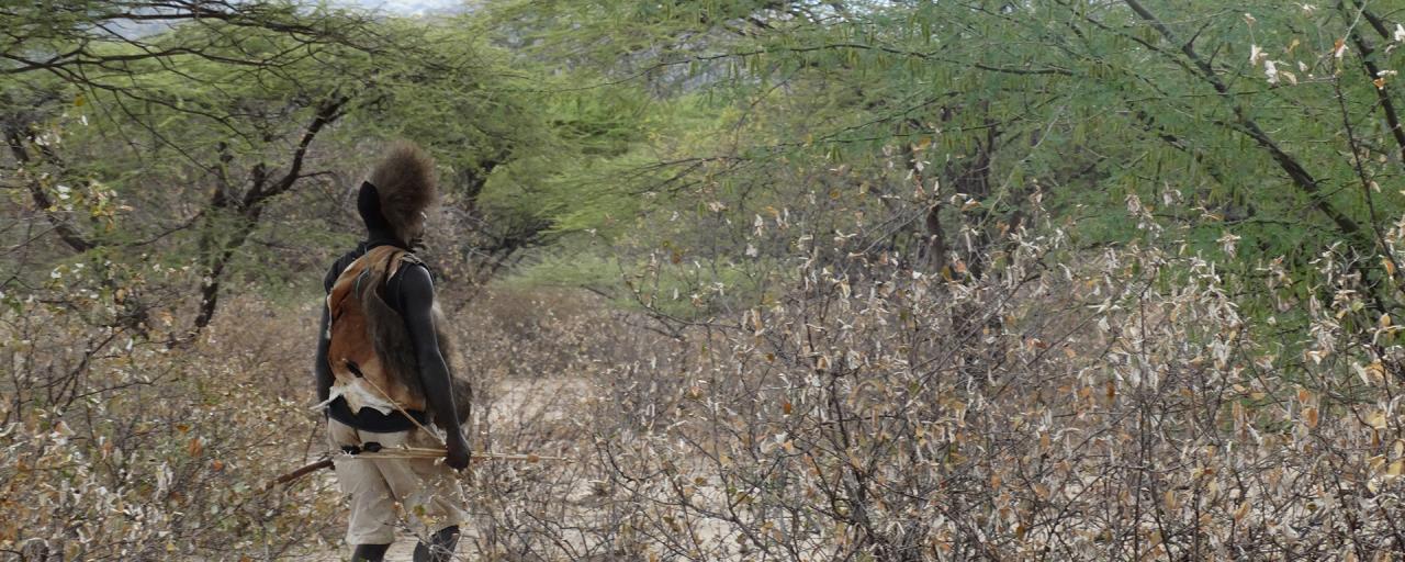 hadzabe hunter walks in the bush
