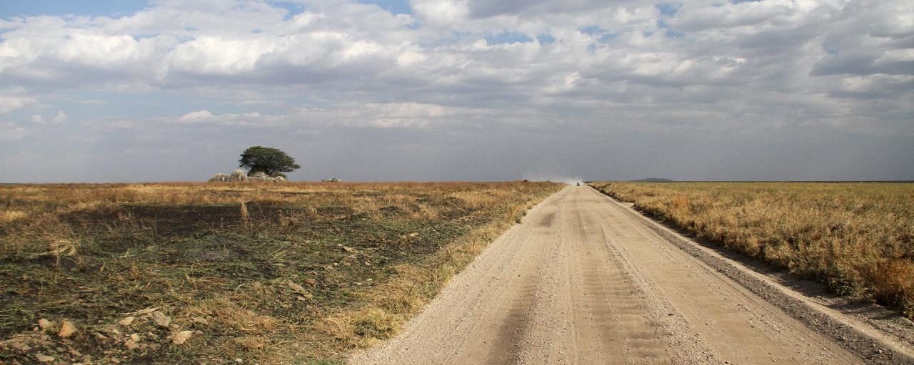 Driving through Serengeti National Park