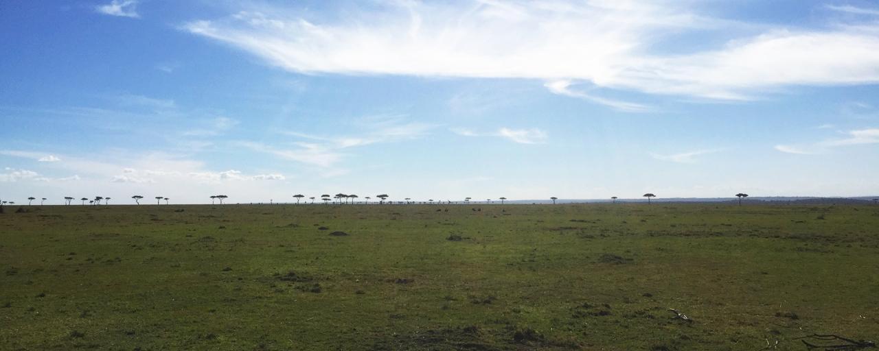 infinity landscape in Masai Mara National Reserve