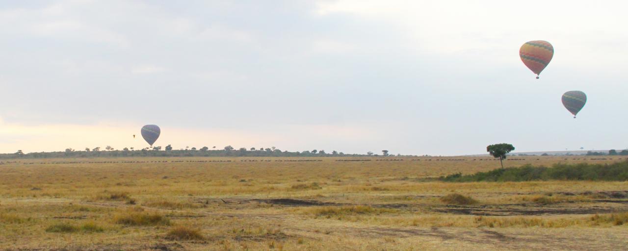 air balloon safari in Masai Mara National Reserve