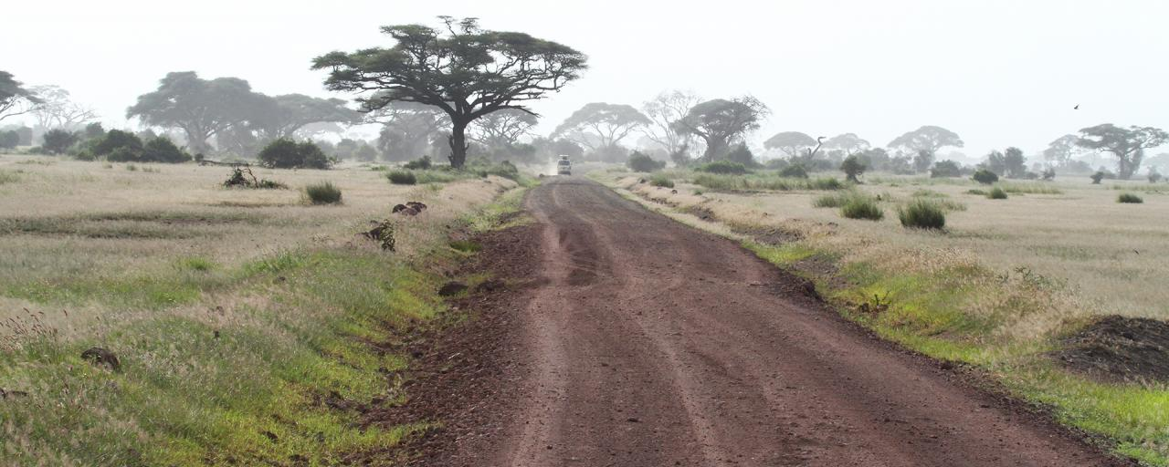 a road in Amboseli National Park