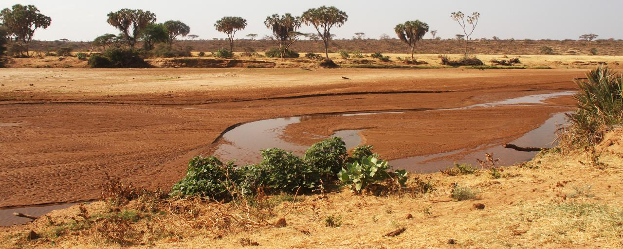 The Ewaso Ngiro River In The Samburu National Reserve