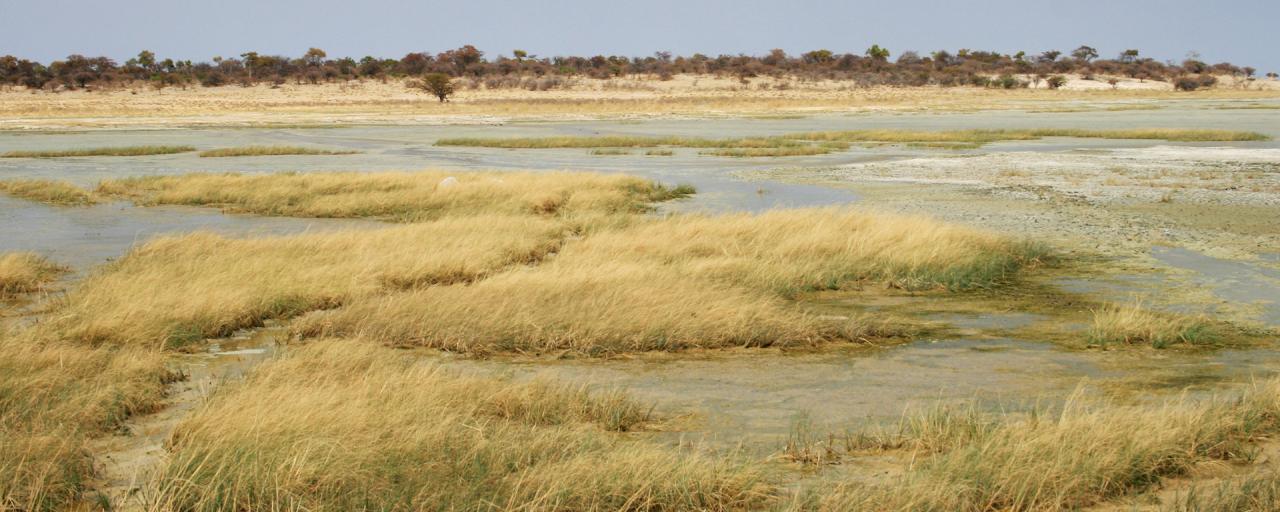 Etosha National Park the pan namibia africa romina facchi