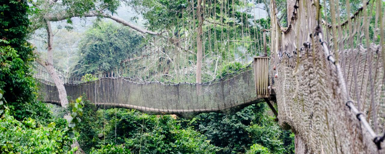 ghana west africa exploringafrica safariadv romina facchi travel kakum