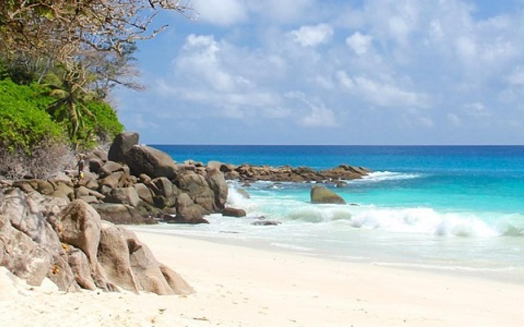 Seychelles beach ocean