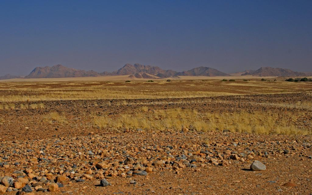 Namibia desert exploringafrica safariafv safari rominafacchi namib