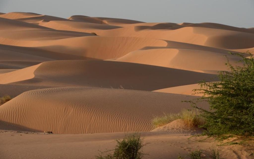 transafricana desert exploringafrica safariadv viaggio travel africa expedition