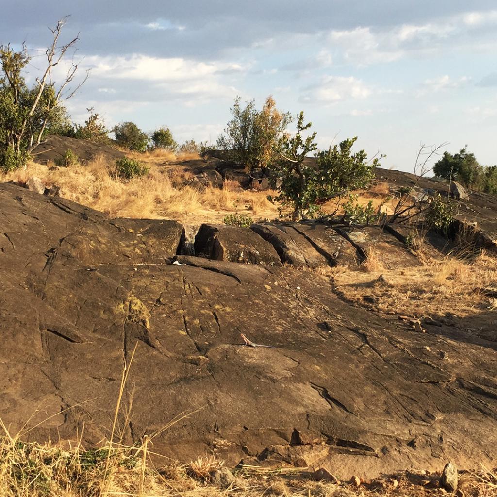 Kopjes in Serengeti National Park