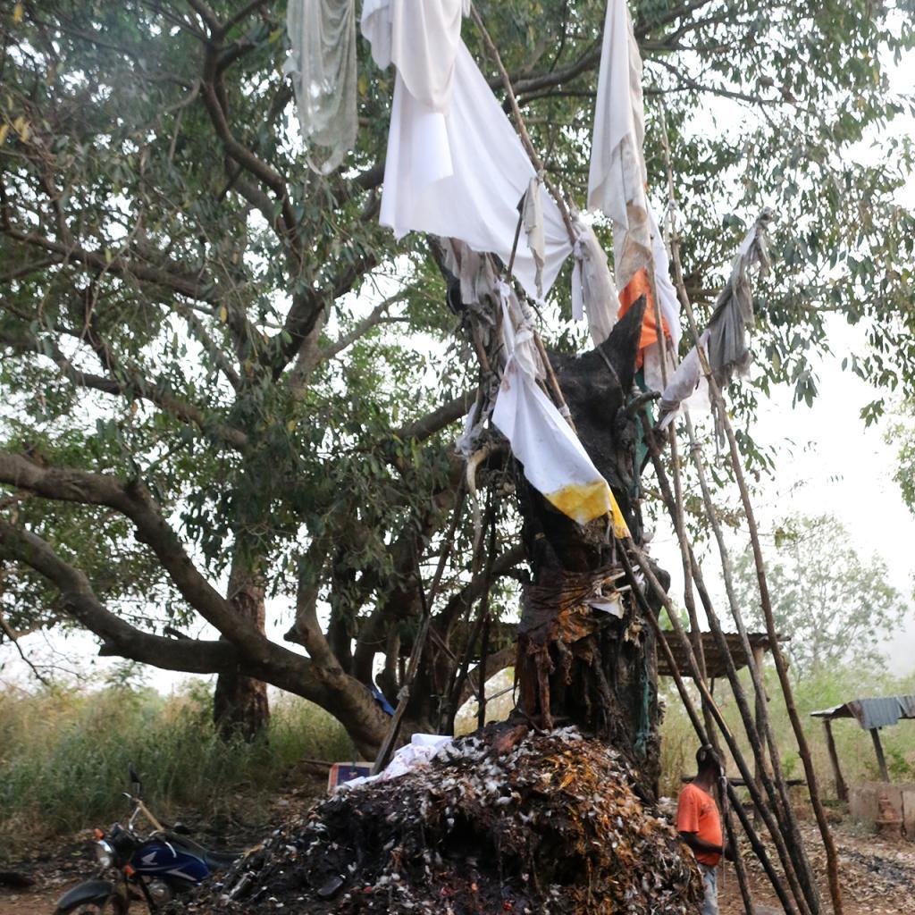 exploringafrica safariadv romina facchi benin dankoli voodoo