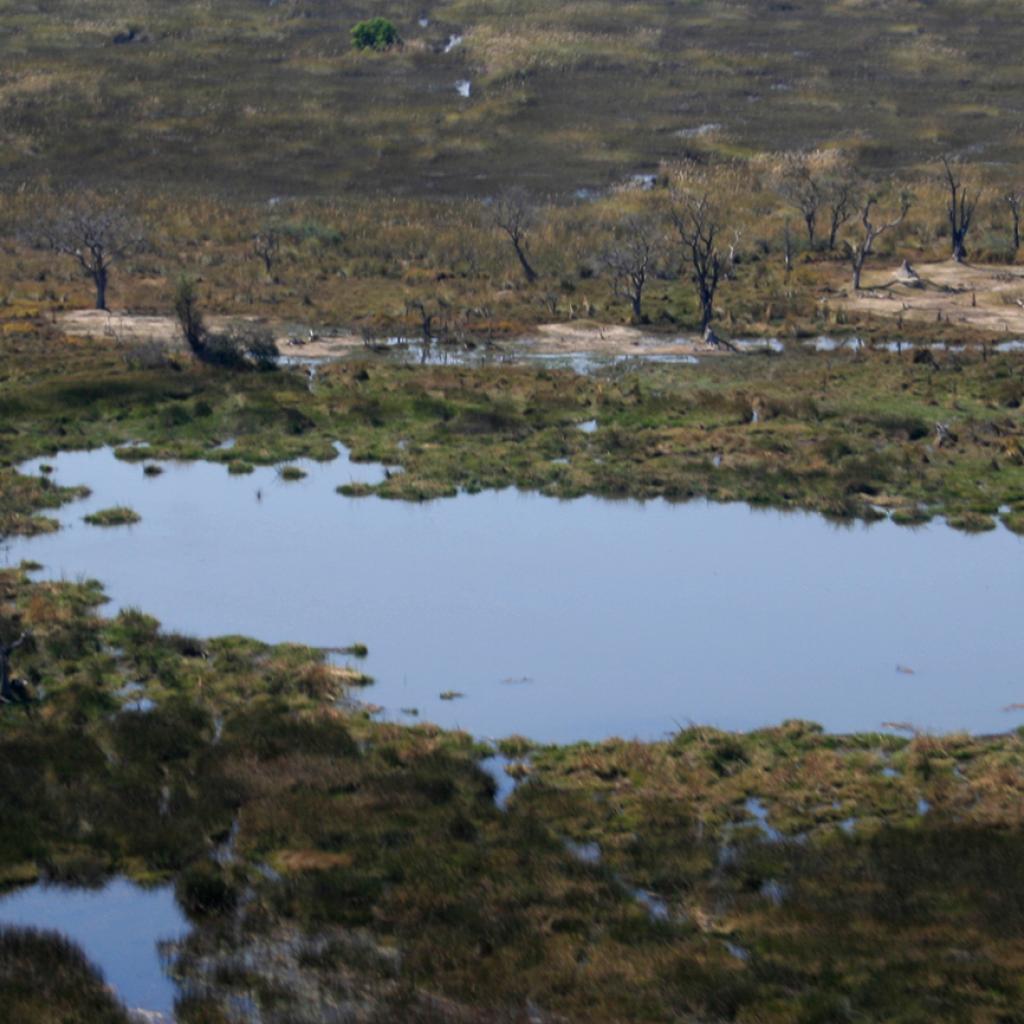 okawango delta exploringafrica safariadv romina facchi travel viaggi