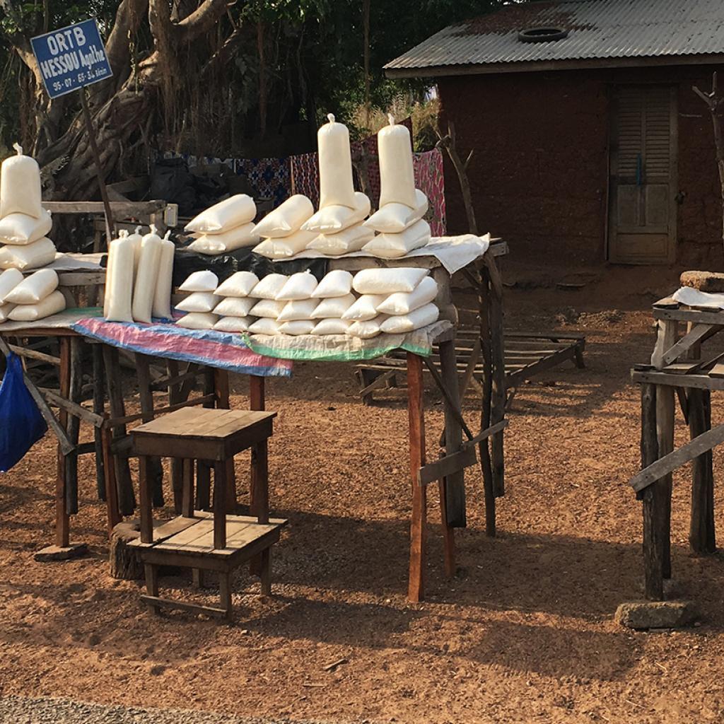 exploringafrica safariadv romina facchi togo travel ethnic group