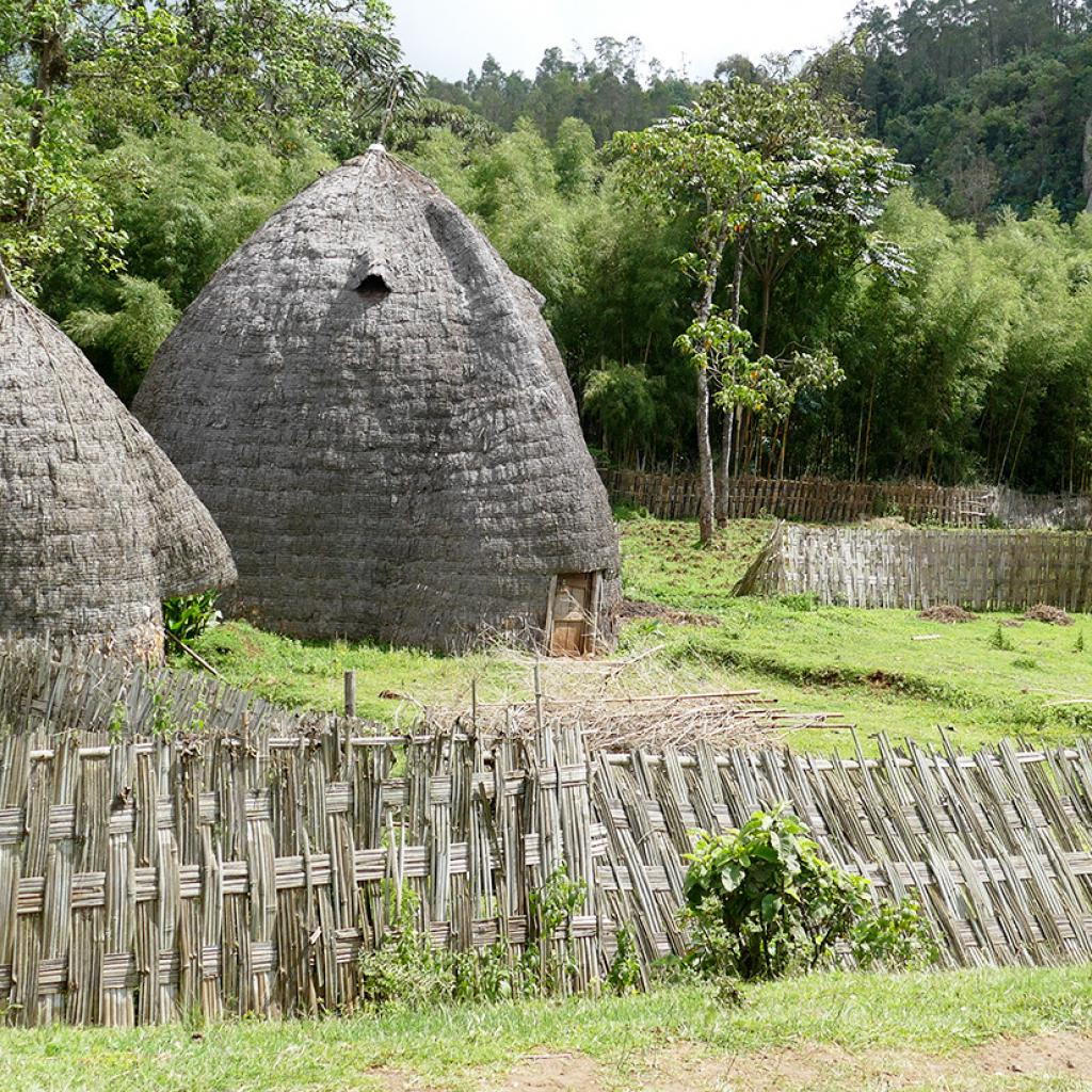 dorze village ethiopia
